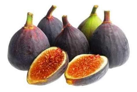Fig-Puree-Machine