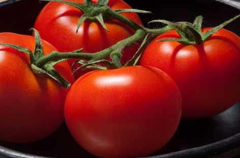 Tomato-hero-015aee27-92ad-4e56-9ce9-18b506c3e070-0-472x310